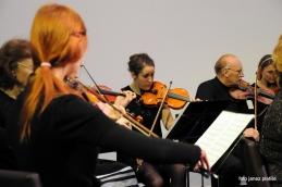 Prve in druge violine.