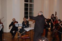 Dirigent in viole.