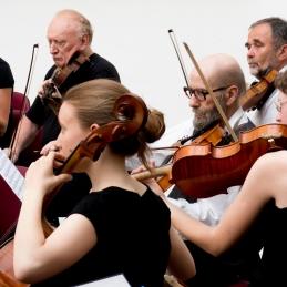 Del drugih violin in viole.