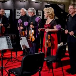 In še agapanthusi kvintetu, kot iskrena zahvala za lep glasben večer.
