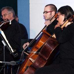 Viole in violončela.