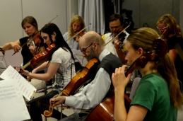 Od violočel preko viole do drugih.