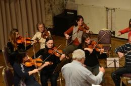Prve violine in vodja drugih