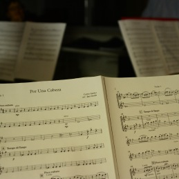 Program za Božično-novoletni koncert.