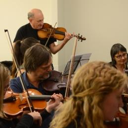 Violince.