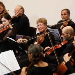 Violi in druge violine.