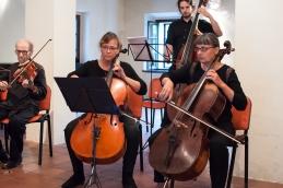 Vili, violončelistki in kontrabasist.